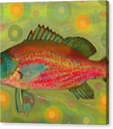 Fanciful Pink Snapper  Canvas Print by Shelli Fitzpatrick