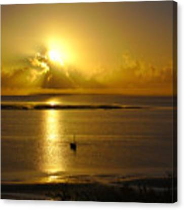 Golden Sunrise Canvas Print by Jeremy Hayden