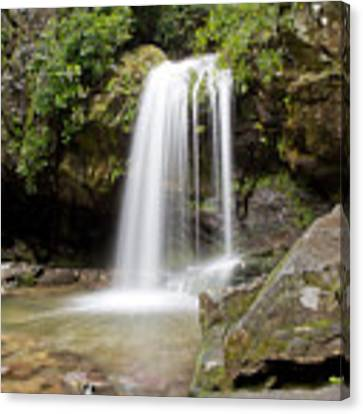 Grotto Falls Great Smoky Mountains Canvas Print by Jemmy Archer