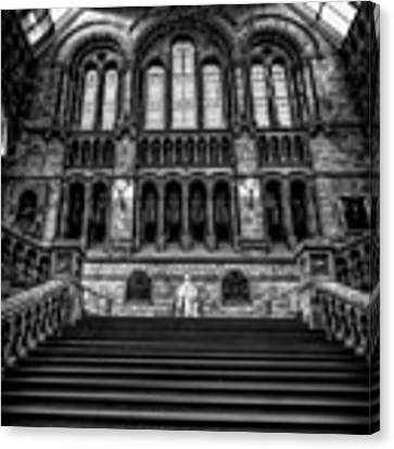 History Museum London Canvas Print by Adrian Evans