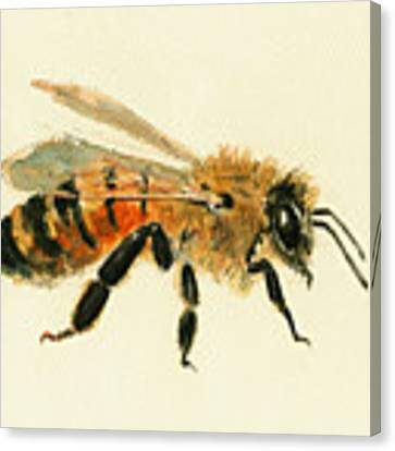 Honey Bee Painting Canvas Print by Juan  Bosco