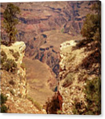 Into The Canyon Canvas Print by Susan Rissi Tregoning