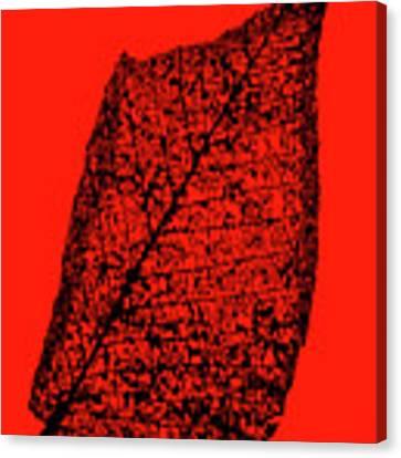 Japanese Beetle Artwork Leaf Canvas Print by Edward Peterson