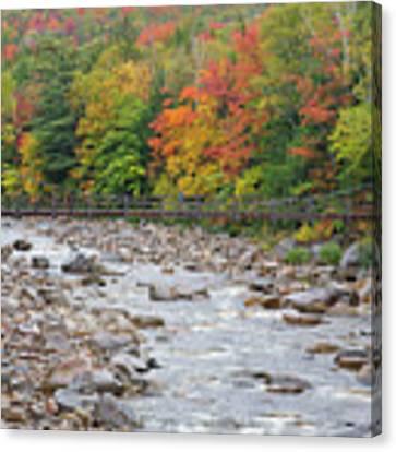 Lincoln Woods Suspension Bridge - Lincoln, New Hampshire Canvas Print by Erin Paul Donovan