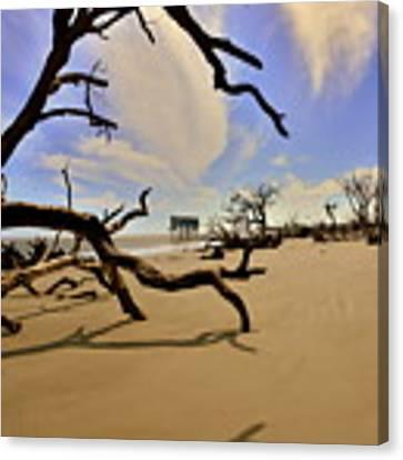 Little Blue And Driftwood Beach Canvas Print by Lisa Wooten