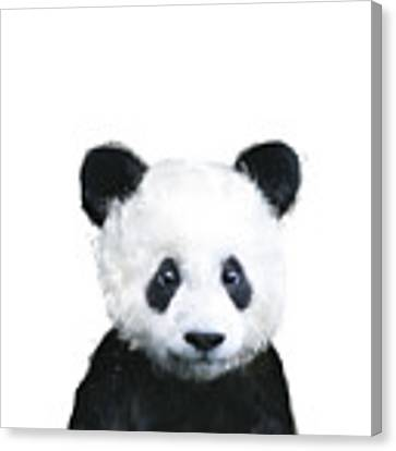 Little Panda Canvas Print by Amy Hamilton