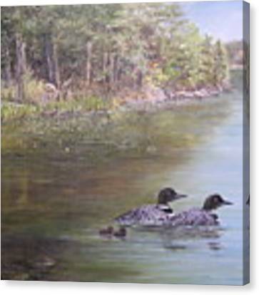 Loon Family 1 Canvas Print by Jan Byington