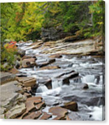 Lower Ammonoosuc Falls - Carroll, New Hampshire Canvas Print by Erin Paul Donovan