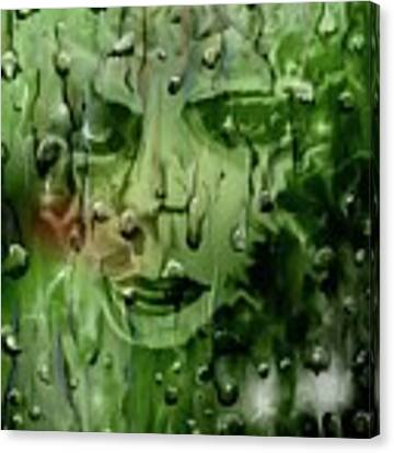 Memory In The Rain Canvas Print by Darren Cannell