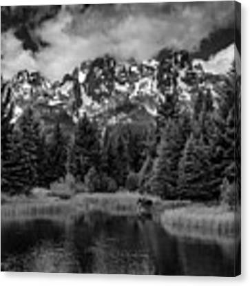 Moose At Schwabacher's Landing Canvas Print by Gary Lengyel
