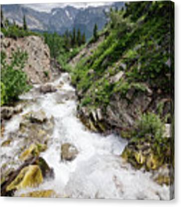 Mountain River Canvas Print by Margaret Pitcher
