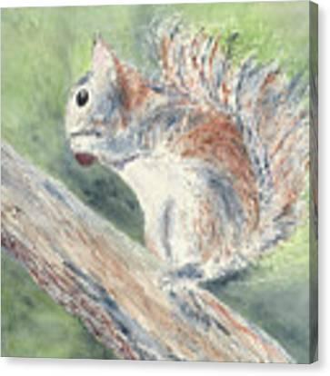 Nut Job Canvas Print by Kathryn Riley Parker
