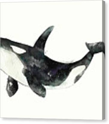 Orca From Arctic And Antarctic Chart Canvas Print