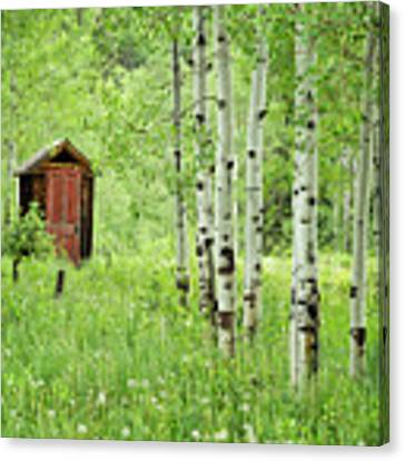 Outhouse With Red Door Canvas Print by Denise Bush