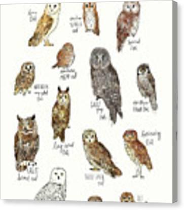 Owls Canvas Print by Amy Hamilton