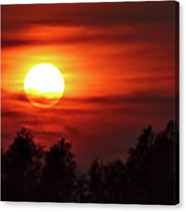 Oxfordshire Sunset Canvas Print by Jeremy Hayden