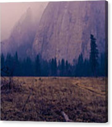 Pathway During First Snow In Yosemite Valley Canvas Print by Priya Ghose