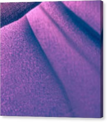 Purple And Bold Canvas Print by Yogendra Joshi