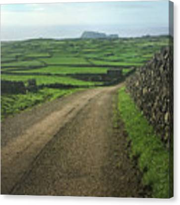 Road Through The Pastrues Of Terceira  Canvas Print by Kelly Hazel