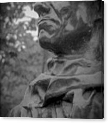 Rodin Burgher - II Canvas Print by Samuel M Purvis III
