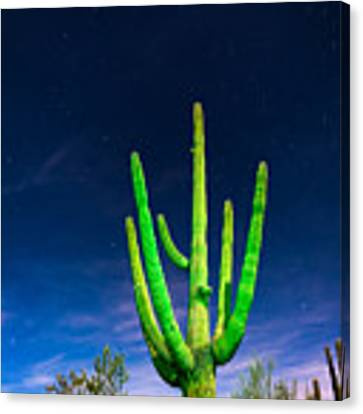 Saguaro Cactus Against Star Filled Sky Canvas Print by Bryan Mullennix