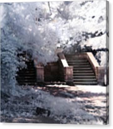 Stairway To Heaven Canvas Print by Helga Novelli