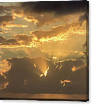 Sun's Rays Canvas Print by David Buhler