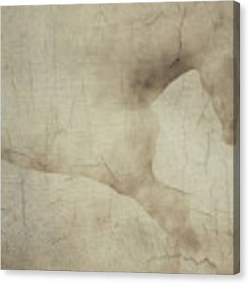 Wall With Picture Of A White Horse Canvas Print by Jan Keteleer