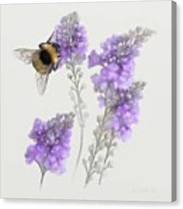 Watercolor Bumble Bee Canvas Print by Ivana Westin
