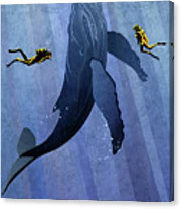 Whale Dive Canvas Print by Sassan Filsoof