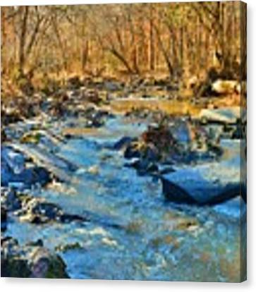 What Streams Are Made Of Canvas Print by Lisa Wooten