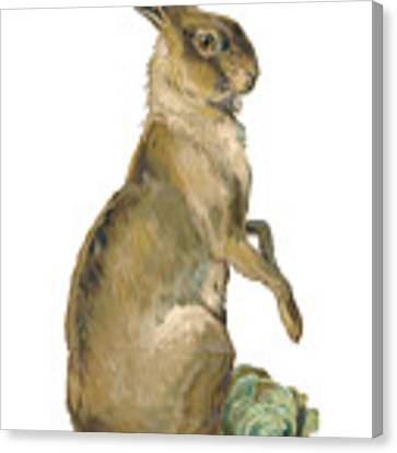 Wild Hare Canvas Print by ReInVintaged