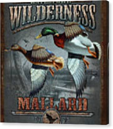 Wilderness Mallard Canvas Print