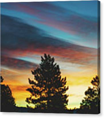 Winter Morning Glory Canvas Print by Jason Coward