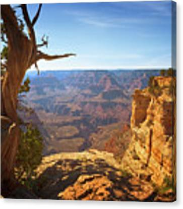 Yaki Point Canvas Print by Susan Rissi Tregoning