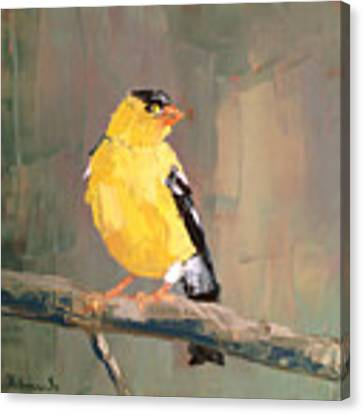 Yellow Finch Canvas Print by Nathan Rhoads