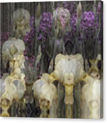 Abstract Iris Garden Canvas Print by Robert G Kernodle