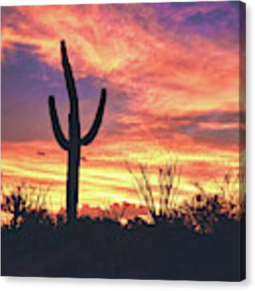An Arizona Sunset Canvas Print by Chance Kafka