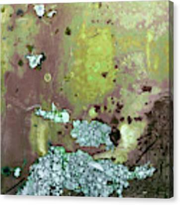 Art Print Abstract 33 Canvas Print by Harry Gruenert