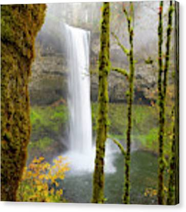 Autumn At Silver Falls State Park Canvas Print by Nicole Young