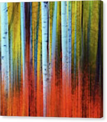 Autumn In Color Canvas Print by John De Bord