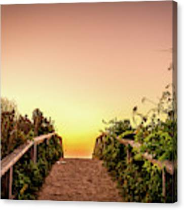 Path Over The Dunes At Sunrise. Canvas Print by Jeff Sinon