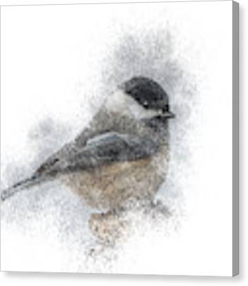 Black-capped Chickadee Perch Canvas Print by Patti Deters