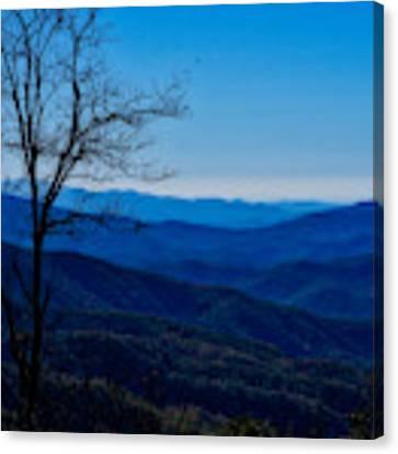 Blue Canvas Print by Kristi Swift