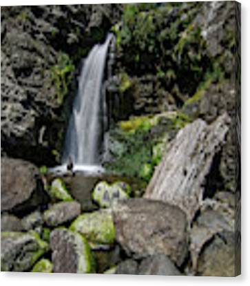 Coastal Falls Canvas Print by Margaret Pitcher