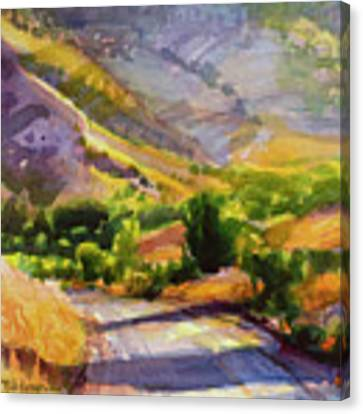 Columbia County Backroads Canvas Print by Steve Henderson