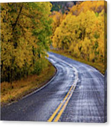 Country Travels Canvas Print by John De Bord