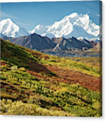 Denali Autumn Canvas Print by Tim Newton