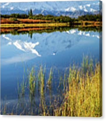 Denali Reflection Canvas Print by Tim Newton