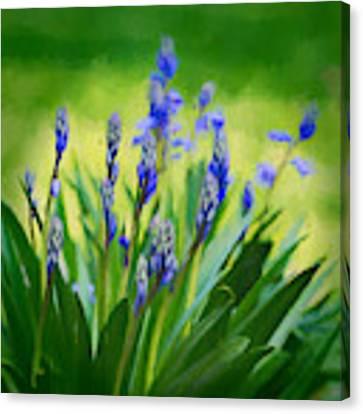Essense Of Spring Canvas Print by Kristi Swift